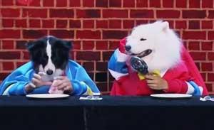 吴起 小品《三个狗狗一台戏》