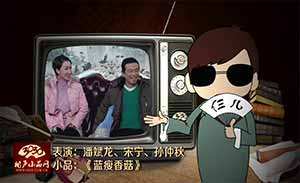 潘斌龙 宋宁 孙仲秋 小品《蓝瘦香菇》清晰版